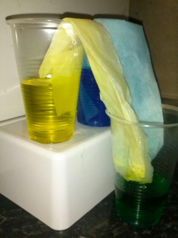 experimento con agua de colores